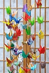 Hanging Origami Cranes -:- 3169 (buddhadog) Tags: cranes origami manypaperhangingcranes multiplecolors sweeper ccc 2wins