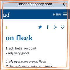 fleek - definition and meaning