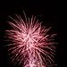 Chester-Lions-fireworks-036