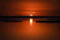 Here comes the Sun (Paulo N. Silva) Tags: