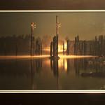 "<b>Shedding Light</b><br/> Jason Elkins (Photography, 2014)<a href=""http://farm4.static.flickr.com/3950/15580732338_99d109550b_o.jpg"" title=""High res"">∝</a>"