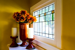 Fall (OPRFHouse Photography) Tags: window zeiss wednesday real estate realestate a7 windowwednesday