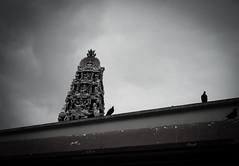 20140831-L1002323111222 (Dennis Wu6) Tags: street leica nepal 2 bw photography singapore 14 rangefinder tibet kathmandu 50 35 旅行 黑白 小印度 duba m9 人文 西藏 布达拉宫 街拍 尼泊尔 加德满都 博卡拉 大昭寺 新加坡 金沙 pokhra summcrion