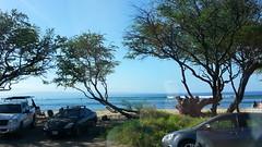 20141109_093325 (dntanderson) Tags: hawaii maui 2014 november09