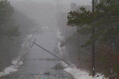 Powerful Winds at the Seashore (brucetopher) Tags: power lines powerlines electric danger wires wire pole telephonepole winddamage wind blow blowing strong winds violent weather severe storm stormy cyclone winter hurricane noreaster fall knockdown blowdown down crash break tip