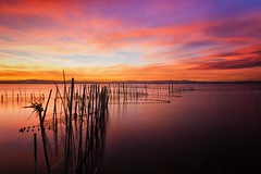 Follow the lines (Anto Camacho) Tags: valencia landscape sunset bigstopper longexposure nature clouds sky lake water valenciancommunity spain colours relax