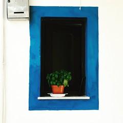 Salina finestra con basilico (Valde65) Tags: minimalist windows finestre sicily islands isole sicilia eolie salina