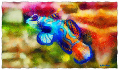 Mandarin fish (Leo Bar) Tags: fish ocean exotic colors compositing corals textures pixinmotion painting leobar awardtree