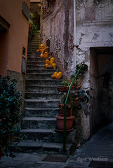 Jackolantern Alley (East Western) Tags: jackolantern halloween riomaggiore cinque terre italy alley stair stairs spooky creepy