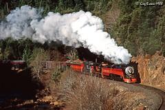 Deep in the Woods (C.P. Kirkie) Tags: southernpacific sp spsiskiyouline cowcreekcanyon douglascounty sp4449 484 4449 passengertrain excursiontrain emd railroads trains