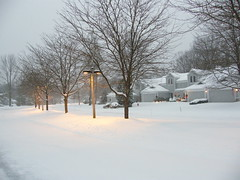 Winter Storm at Sunset (Stanley Zimny (Thank You for 22 Million views)) Tags: winter storm snow seasons tree sunset
