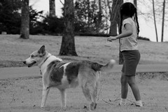 girl and her dawg (jak.conrad) Tags: lucy twizzler dog dogs rainbowbridge heartbroken rescue pups dogislove mutt