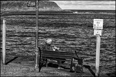 The scotish Way of Life (Lato-Pictures) Tags: schottland scotland schwarzweis monocrom draussen meer sea outdoor way life meinebank