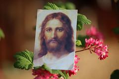 Good Friday (Rolf-Schweizer) Tags: flickr artphotography art jesus christ thechurchofjesuschristoflatterdaysaints kirchejesuchristiderheiligenderletztentage goodfriday easter peace lord