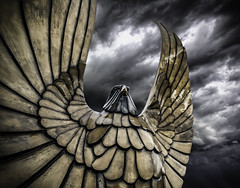 S.P.Q.R. (Lightcrafter Artistry) Tags: rome roman august power eagle sky storm hdr composition pov design wings feathers bronze statue magnificence aquila standard romanstandard spqr legion romanempire clouds glory bird europe europeanhistory