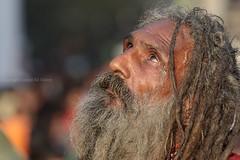 0F1A0481 (Liaqat Ali Vance) Tags: soofi saint portrait people shrine shah hussain madhoo lal google liaqat ali vance photography lahore punjab pakistan