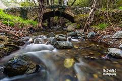Venetian Bridge (Andreas Iacovides) Tags: bridge venetian water river stream forest landscape canon eos 5d mark iii cyprus troodos