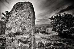 Megalith monochrom (BKFofOF) Tags: fx monochrom bw landkreisgiessen stein megalith muschenheim lich tokina nikon d610 hipstamatic