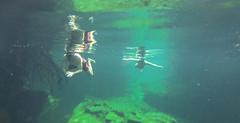 Tulum Casa Cenote friends-4