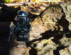 The Elite Reinforcement (Brick Operator) Tags: death trooper lego starwars star wars minifig stormtrooper rebel woods nature forest black elite gun tree reinforcement battle