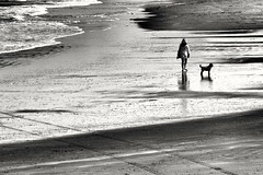 On the beach (wimkappers) Tags: blackwhitephotos bw monochrome beach people walking sea dog