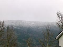 New snow on Mt Sentinel today. (arrowlakelass) Tags: snow sentinel p1100682edit