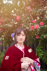 Young woman in Kimono standing in front of camellia flowers (Apricot Cafe) Tags: img25842 2024years asia asianandindianethnicities ishikawaprefecture japan japaneseethnicity japaneseculture kanazawa kimono sigma35mmf14dghsmart buildingexterior camellia charming cheerful citylife composed copyspace day enjoyment fashion flower freedom freshness happiness lifestyles lookingatcamera oneperson onlywomen outdoors photography portrait relaxation smiling springtime standing street tourism traditionalclothing travel traveldestinations vertical waistup walking weekendactivities women youngadult kanazawashi ishikawaken jp