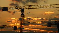Cranes (Sean MacEntee) Tags: skyline construction cranes