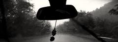 Goaway. (Frappzzz) Tags: bw rain go