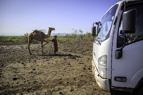 A new and old means of transport co-exists in Afar region of Ethiopia