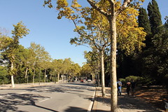 """MontJuic_0071 • <a style=""""font-size:0.8em;"""" href=""""https://www.flickr.com/photos/66680934@N08/14953052173/"""" target=""""_blank"""">View on Flickr</a>"""