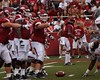 University of Arkansas Football vs Nichols State University (Garagewerks) Tags: college sport football university all state bigma sony sigma arkansas vs sec fayetteville nichols razorbacks 2014 50500mm f4563 slta77v