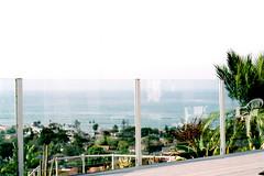 san diegooo. (Dakota Olsen) Tags: ocean wood city sky color tree film nature water glass beautiful analog 35mm landscape spring nikon break fine grain palm deck em 2014