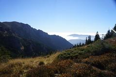 Vedere spre Gropșoarele de pe Muntele Roșu