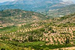 Mycenae (stephanrudolph) Tags: landscape nikon europa europe greece handheld griechenland