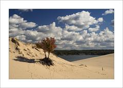 Silver Lake (DJ Wolfman) Tags: sky lake color clouds michigan olympus michiganfavorites silverlake sanddunes em1