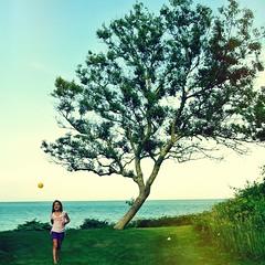 Cape Cod (luidude) Tags: ocean camera summer portrait tree green beach grass kids square landscape fun nikon play capecod nikonv1