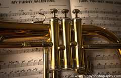 The Brass section (www.higbyphotography.com) Tags: music notes trumpet sheetmusic brass valves flugelhorn myfunnyvalentine