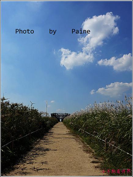 首爾 天空公園 (33).JPG