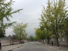 2014 Oct North Korea trip DPRK  (925) (Lawrence Wang 王治钧) Tags: trip korea korean northkorea nk pyongyang panmunjom dprk 朝鲜 northkorean 平壤 北朝鲜 北韩 板门店
