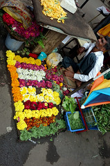 Flower Seller (cowyeow) Tags: street city travel flowers people india man flower color asian asia market candid indian poor business exotic maharashtra marketplace trade seller pune streetmarket flowersellers