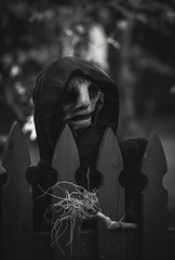 spirit (Jen MacNeill) Tags: blackandwhite bw halloween spirit ghost creepy spooky