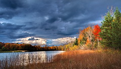 In Context - Crego Park (nelhiebelv) Tags: autumn fall colors mi lansing cregopark
