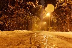 Empty Alley (Kirill Bannov Photography) Tags: park autumn trees snow wet night alley boulevard nocturnal russia nightlight hdr chelyabinsk  3xp  74ru 174ru