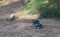 October 18, 2014 (2) (gaymay) Tags: california gay love happy shoe desert palmsprings triad