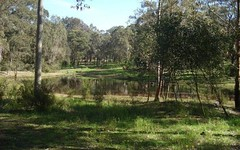 456 BUTTERWICK RD, Butterwick NSW
