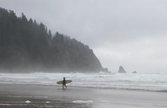 short sands surfer (carolyn_in_oregon) Tags: oregon coast pacificocean oswaldweststatepark shortsandsbeach