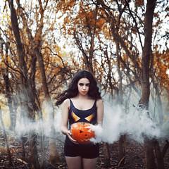 240/365 (Amy Spanos) Tags: halloween pumpkin amy spanos amyspanos