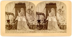 The Haunted Lovers (Stereoscopic Card) (Alan Mays) Tags: ephemera stereoscopiccards stereographs stereoviews stereocards stereophotography stereoscopic stereo cards views photographs photos foundphotos spiritphotography spiritphotos spirits ghosts spiritualism spiritualists hauntedlovers haunted lovers men women couples ghostly strange spooky mysterious translucent clothes clothing interiors furniture plants humor humorous funny amusing comic tongueincheek victorian 19thcentury nineteenthcentury 1890s antique old vintage photographicamusements vptp