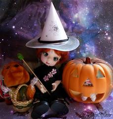 CORBY-MAY et ses exploits d'Apprentie Sorcire (maiptitfleur) Tags: halloween pumpkin witch citrouille sorcire maiptitfleur corbymay fa